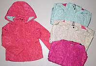 Демисезонные курточки на девочек Glo-story 116,122,128р.