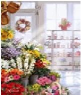 """Картина по номерам """"Цветочный магазин"""" 40х50 см. Идейка. КН2023"""