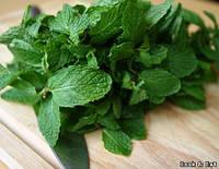 Отдушка  для мыла листья мяты с нотами зелени, Floressence
