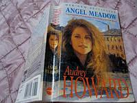 Книга ANGel Meadow из Британия на английском языке