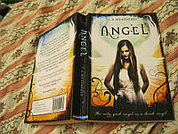 Книга на английском языке ANGEL британия английски