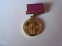 Знак За успехи в народном хозяйстве СССР