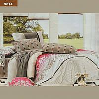 9814 Полуторное постельное белье ранфорс Viluta