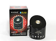 Портативная Bluetooth колонка WSTER SPS WS Q10, музыкальная колонка, mp3 колонка с fm приемником