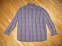 Рубашка SIGNUM 100% хлопок, XL