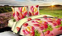 ДВУСПАЛЬНЫЙ КОМПЛЕКТ ПОСТЕЛЬНОГО БЕЛЬЯ тюльпаны, ткань  ранфорс