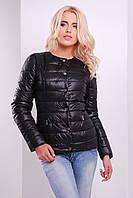 Короткая женская куртка черная на кнопках (весна-осень)