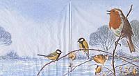 Редкая салфетка декупажная Птицы зимой 6074