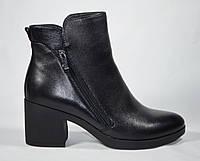 Женские ботинки ботильоны на устойчивом маленьком каблуке Magnori кожа