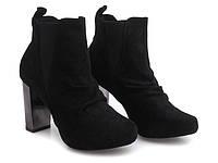 Женские ботинки Alfecca Black, фото 1