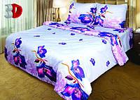 Комплект постельного белья ТЕП Виктория_168