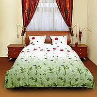 Комплект постельного белья ТЕП Маки зеленые с бабочками_533