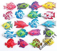 Рыбки  магнитные для ловли удочкой с магнитом 3 шт