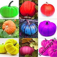 10 семян тыквы разных цветов