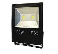 Освещение WORKS Прожектор LED Works FL100 (100W)