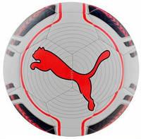 Мяч  Puma Evo Power 6 Trainer 82231 15