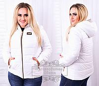 Короткая женская куртка белая из плащевки, батал ( р. 48-56  )