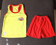 Летний комплект на мальчика (шорты и борцовка) 98/104 см