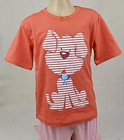Пижама для девочки (футболка+бриджи)