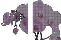 Диптих.Орхидея на белом КМД 2001