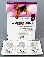 Дронтал (Drontal) таблетка от глистов для собак