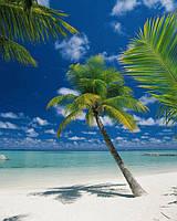 Фотообои на стену «Остров в океане». Komar 4-883 Ari Atoll