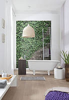 Komar 4-324 Ivy Фотообои на стену «Плющ»
