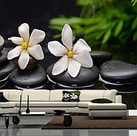 """Фото обои """"Белые цветы и камни"""", Фактурная текстура (холст, иней, декоративная штукатурка)"""