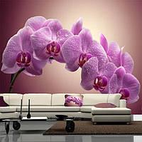"""Фото обои """"Ветка орхидеи"""", Фактурная текстура (холст, иней, декоративная штукатурка)"""