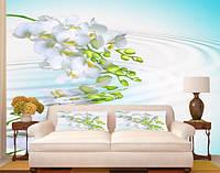 """Фото обои """"Веточка белой орхидеи"""", Фактурная текстура (холст, иней, декоративная штукатурка)"""