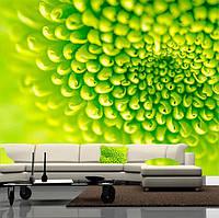 """Фото обои """"Зеленая нежность"""", Фактурная текстура (холст, иней, декоративная штукатурка)"""