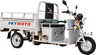 Грузовой мотоцикл HERCULES-110C (трицикл)