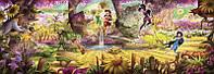 4-416 Fairies Forest Детские фотообои на стену Феи