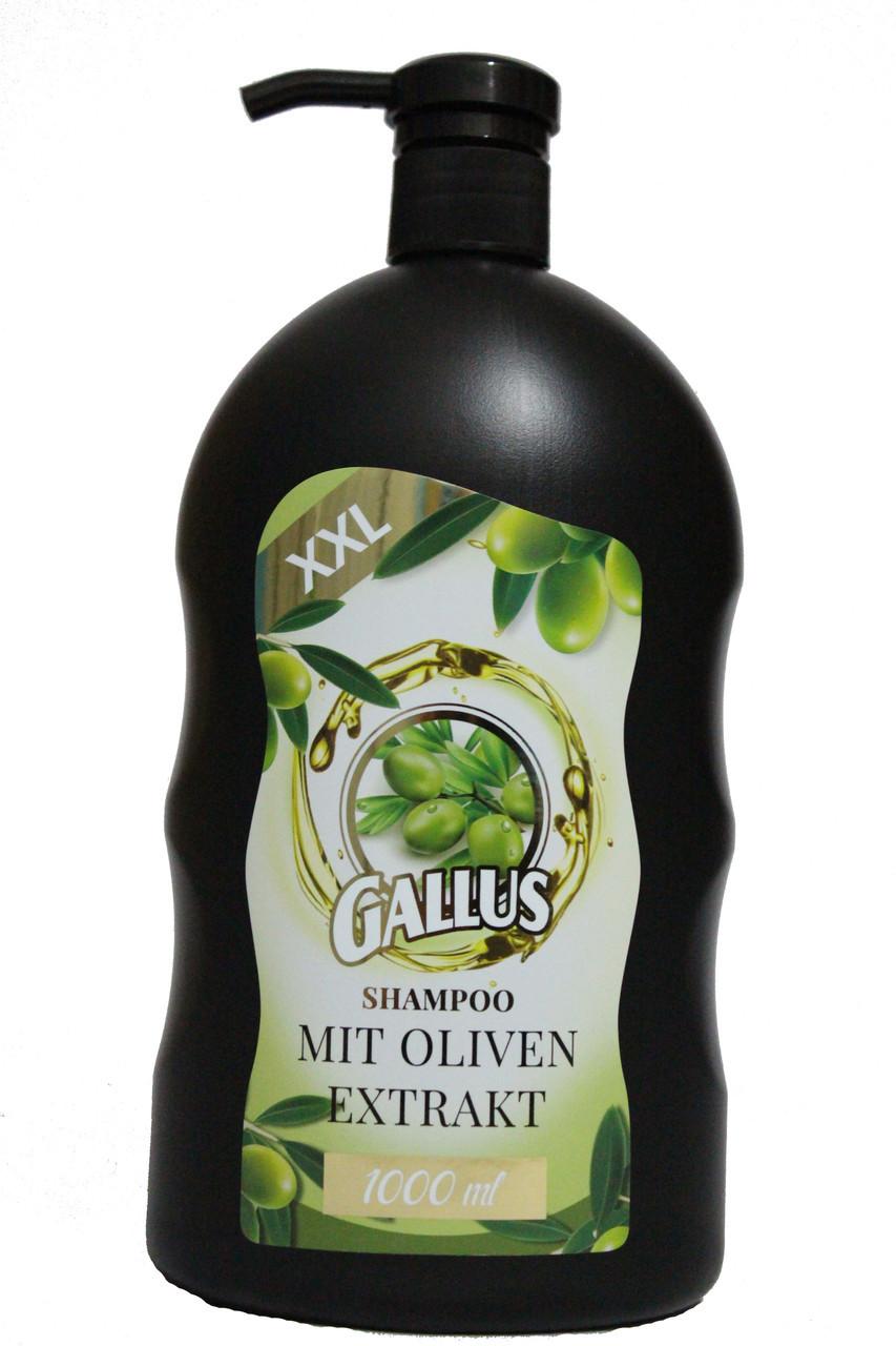 Шампунь Gallus с оливковым экстрактом 1000 мл