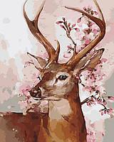 Раскраска по номерам Олень и ветка сакуры (BK-GX9369) 40 х 50 см