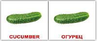Комплект карточек «Vegetables/Овощи» МИНИ 40