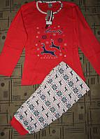 Женская пижама (кофта и штаны). 42-44р. Коралловая