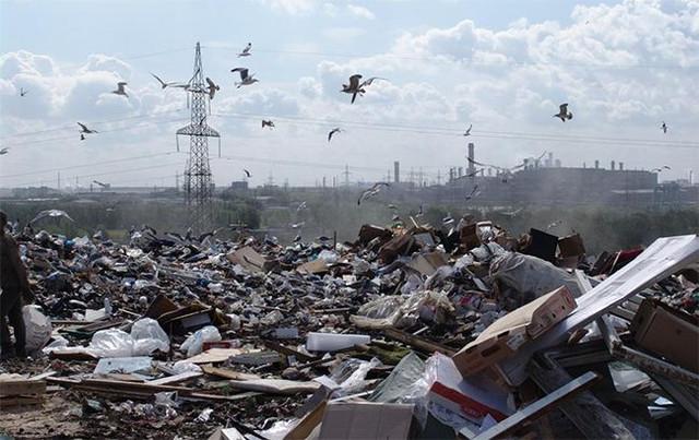 Спасти планету: украинцы затеяли революцию в переработке мусора