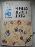 Физиология лейкоцитов человека