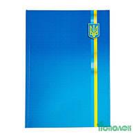 Книга канц.  96л.клетка офсет ВМ.2400-38 символ Украины