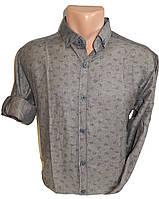 Рубашка мужская трансформер огурец