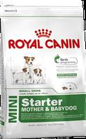 Royal Canin Mini Starter 8,5 кг для щенков маленьких пород