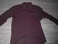 Рубашка мужская почти даром Terranova