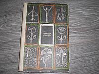 Природа и люди редкая книга