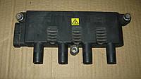 Катушка зажигания 1.4 V8 Фиат Добло / Fiat Doblo 55200112, 55208723