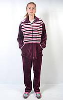Женский велюровый спортивный костюм больших размеров - зебра (бордо/розовый)