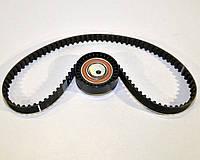 Комплект натяжитель + ремень грм (96z) на Renault Kangoo II 1.6dCi 2008-> — Renault (Оригинал) - 130C17480R