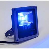 Синий светодиодный прожектор (10 Вт)