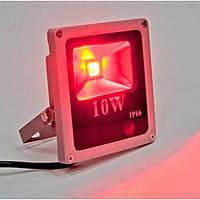 Светодиодный красный прожектор (10 Вт)
