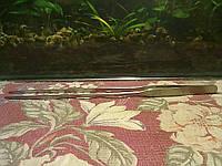 Прямой пинцет для посадки аквар.растений 27см.